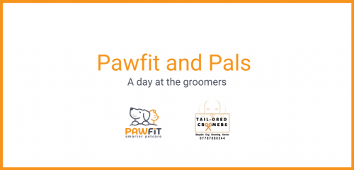 Pawfit and Pals